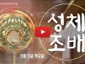 8월 '성체조배' -  평화방송 매주 목요일 8시 방영