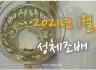 1월 성체조배 (평화방송 : 월~ 토까지 아침 4:30, 밤 9:05)