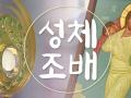 7월 성체조배(평화방송 : 월~ 토까지 아침 4:30, 밤 9:05)