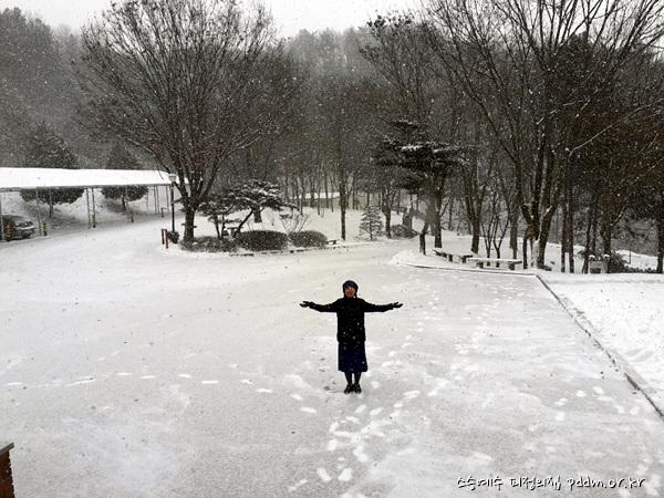눈이 펑펑~ 오고 있어요~